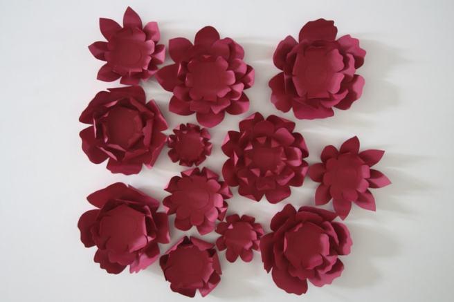Fleurs YMYO